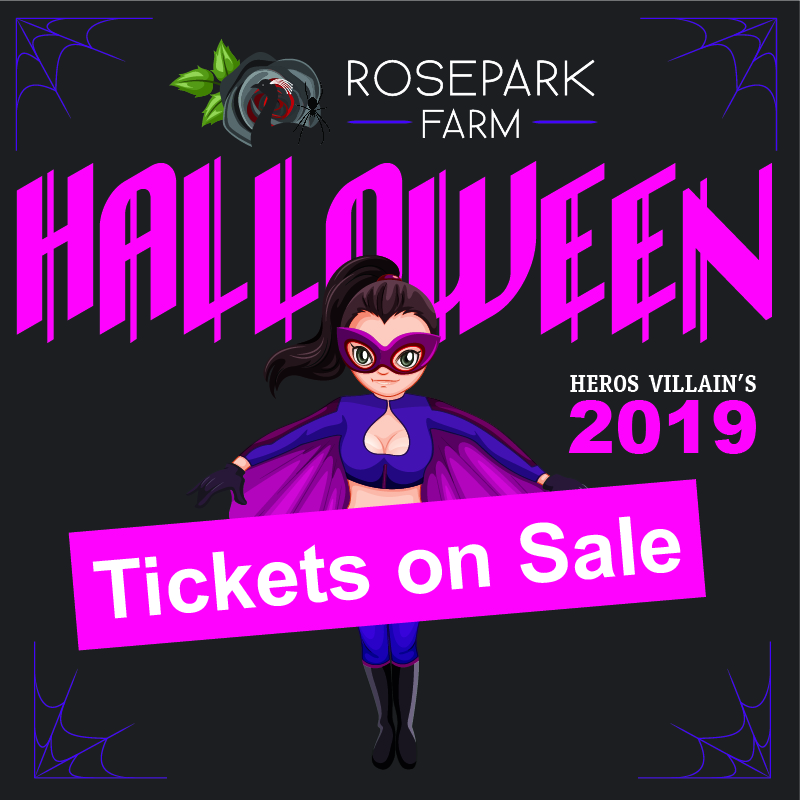 Halloween Events Northern Ireland 2019